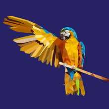 Low Poly Yellow Parrot ,vector...