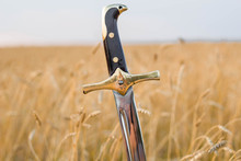 Saber In A Wheat Field