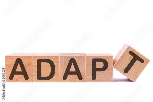 Vászonkép ADAPT word written on white cubes on a light background