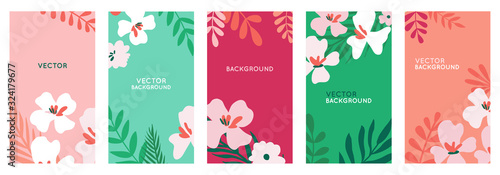 Obraz Vector set of abstract backgrounds with copy space for text - bright vibrant banners, posters - fototapety do salonu