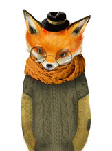 Cute Fox Boy With Glasses Hat ...