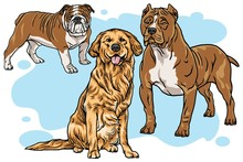 Dogs Vector Cartoon Drawing Se...