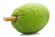 Breadfruit Isolated Cut Out On...