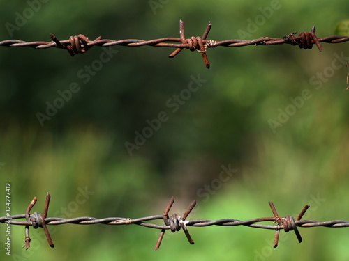 Photo rustic barbed wire crop closeup with blur green environment background