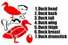 Set Of Four Pieces Of Duck, Du...