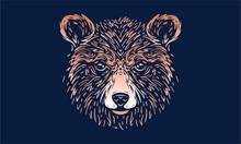 Bear On Dark Background