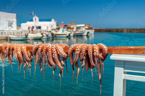 Pulpos secándose al sol en Naoussa, isla de Paros, Grecia
