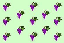 Purple Grapes With Green Leafy Stems On Background