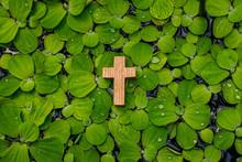 십자가,연꽃