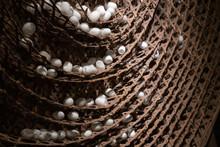 Silkworm Cocoon In Bamboo Weav...