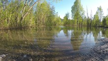Flooded River Water In Green S...