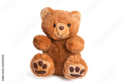 Obraz na plátne teddy bear soft toy isolated