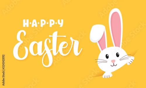 Photo Easter rabbit, easter Bunny. Vector illustration.