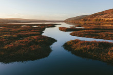 Intertidal Estuary With Water ...