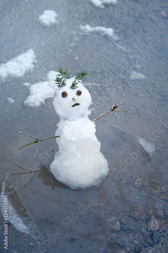 snowman in puddle Canvas Print