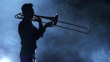 Silhouette Professional Musici...