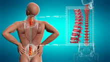 Anatomical Vision Back Pain. S...