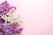 Brunches of beautiful white and purple lilacs on pink background. Top view. Copy space for your text. Mockup