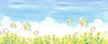 青空と菜の花畑とシャ...