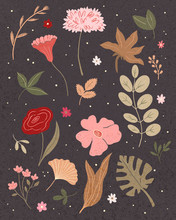 Boho Floral Illustration Set With Leaves And Herbs.Flowers And Leaves Collection. Plants On Dark Backround.Hand Drawing