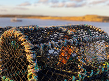 Lobster Pots On Amble Harbour, Northumberland
