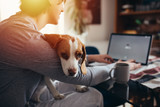 Fototapeta Zwierzęta - young man cuddling with his dog while drinking morning coffee and using laptop in his kitchen