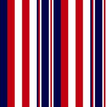 Classic Modern Vertical Stripe...