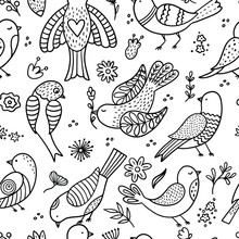 Hand Drawn Birds On A White Background