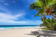 canvas print picture - Tropical Beach. Sunny beach with coco palms and turquoise sea. Summer vacation and tropical beach concept.