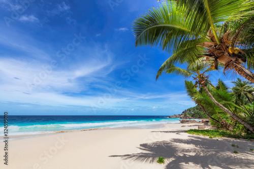 Foto Tropical Beach