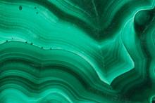 The Green Malachite. An Orname...