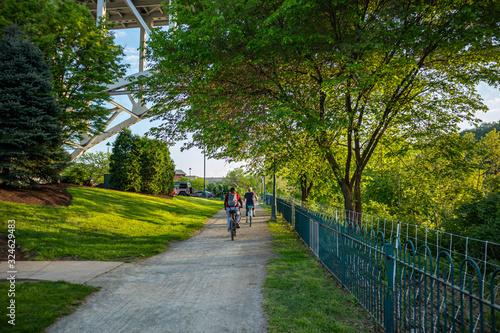Obraz na plátně People riding bicycles on a path, under green trees