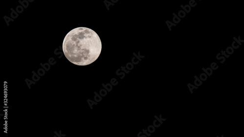 Obraz The First Super Moon of 2020 - fototapety do salonu