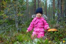 Cute Little Girl Picking Mushr...