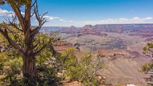 Few Green Trees Along With Colorful Canyons And Varied Forms Of The Land In Arizona. --wide Shot