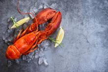 Fresh Lobster Food On A Black ...