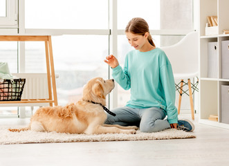 Beautiful girl training lovely dog
