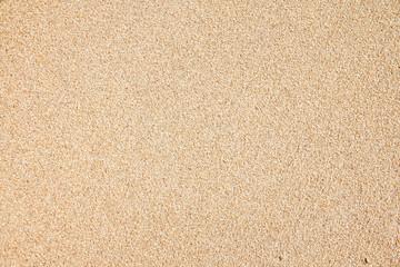 Sea beach sand texture background