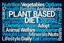 Plant Based Diet Word Cloud On...