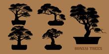 Set Of Bonsai, Black Silhouett...