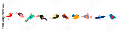 Cute cartoon different multicolored birds in row on white background. Narrow horizontal banner for web, packaging, textile.