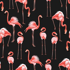 Fototapeta Zwierzęta Pink flamingo, black background. Floral seamless pattern. Tropical illustration. Exotic birds. Summer beach design. Paradise nature.