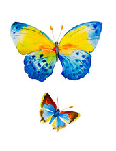 Watercolor Illustration Of Two Blue Butterflies Isolated On White Background
