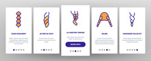 Braid Bread Hairstyles Onboarding Icons Set Vector. Long Female Braid, Braided Hair Style With Bow-knot, Fashion Pigtail Illustrations
