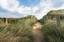 Alley Through Tall Grass On A Sandy Dune On Sylt Island