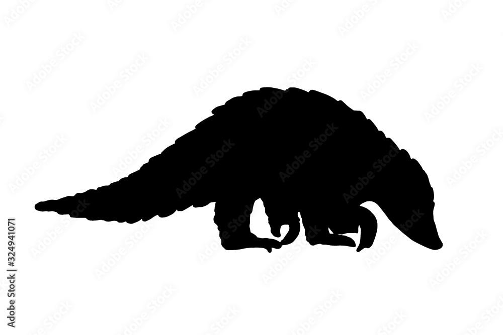Fototapeta pangolin animal black isolated silhouette