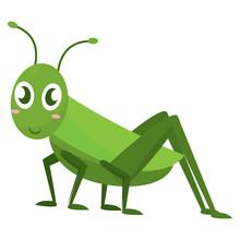 Isolated Happy Cricket Cartoon