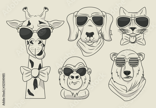 funny animals with sunglasses cool style Wallpaper Mural