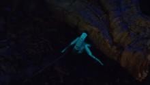 Fluorescent Scorpio Hiding Und...