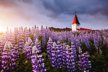 Great view of Vikurkirkja christian church. Location place Vik i Myrdal village, Iceland, Europe.